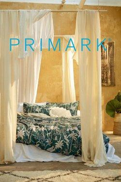 Catálogo Primark en Alicante ( 9 días más )