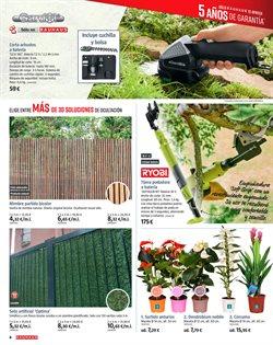 Ofertas de Plantas  en el folleto de BAUHAUS en Madrid