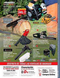 Ofertas de Abono para césped  en el folleto de BAUHAUS en Madrid