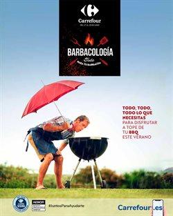 Ofertas de Jardín y Bricolaje en el catálogo de Carrefour ( 9 días más)