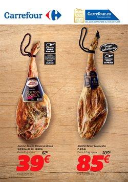 Ofertas de Carrefour  en el folleto de Burgos