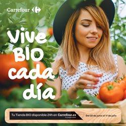 Ofertas de Temporada  en el folleto de Carrefour en Ourense