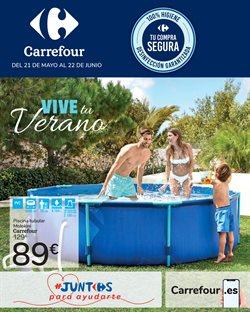 Ofertas de Jardín y Bricolaje en el catálogo de Carrefour en Pedroñeras ( 26 días más )