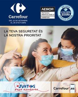 Catálogo Carrefour en Girona ( 3 días publicado )