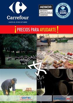 Catálogo Carrefour en Granada ( 5 días más )