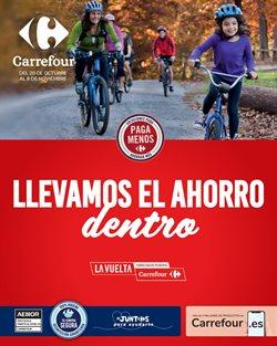 Catálogo Carrefour en Granada ( Publicado hoy )