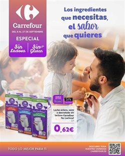 Ofertas de Carrefour en el catálogo de Carrefour ( 10 días más)