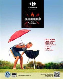 Ofertas de Jardín y Bricolaje en el catálogo de Carrefour ( 6 días más)