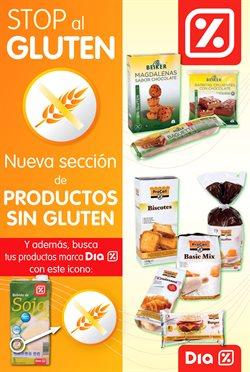 Ofertas de Dia  en el folleto de Valencia