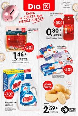Ofertas de Dia  en el folleto de Madrid