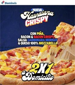 Catálogo Domino's Pizza ( Más de un mes)