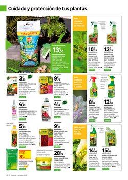 Comprar Tratamientos De Jardín En Palma Ofertas Y Descuentos