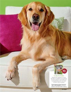 Ofertas de Snacks para mascotas  en el folleto de El Corte Inglés en Valencia