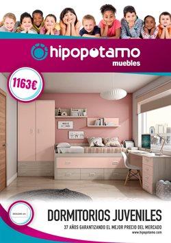 Ofertas de Muebles Hipopótamo  en el folleto de Zaragoza