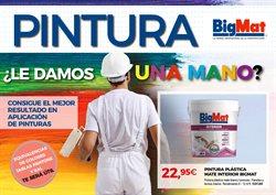 Ofertas de Jardín y bricolaje  en el folleto de BigMat en Torrevieja