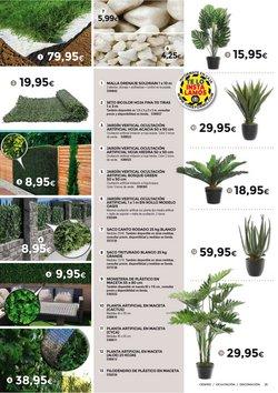 Ofertas de Arbustos en BigMat