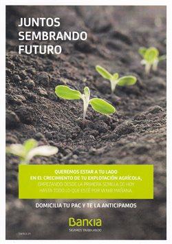 Ofertas de Bankia  en el folleto de Guadalajara