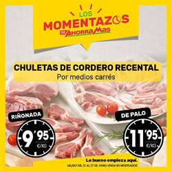 Mercadona cat logos y ofertas junio 2018 for Catalogo lidl granada