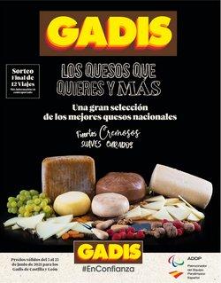 Catálogo Gadis ( 7 días más)