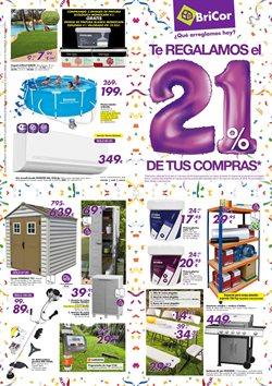 Ofertas de Jardín y bricolaje  en el folleto de BriCor en Madrid