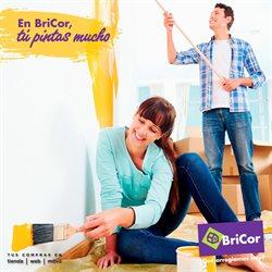 Ofertas de Jardín y bricolaje  en el folleto de BriCor en León