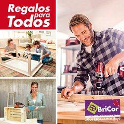 Ofertas de BriCor  en el folleto de Valencia