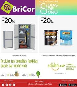 Catálogo BriCor ( Publicado hoy)