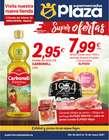 Catálogo Supermercados Plaza en Madrid ( 10 días más )