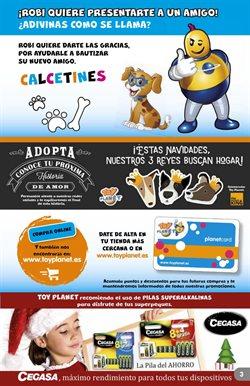Ofertas de Pilas  en el folleto de Toy Planet en León