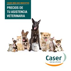 Ofertas de Bancos y seguros  en el folleto de Caser Seguros en Guadalajara