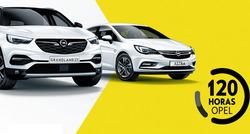 Ofertas de Opel  en el folleto de León
