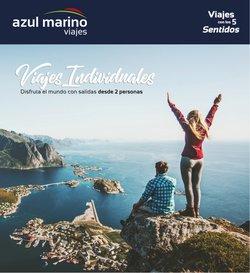 Ofertas de Navidad en el catálogo de Viajes Azul Marino ( Publicado ayer)