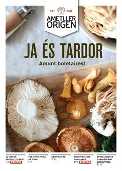 Ofertas de Hiper-Supermercados  en el folleto de Ametller Origen en L'Hospitalet de Llobregat