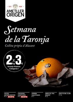 Ofertas de Hiper-Supermercados  en el folleto de Ametller Origen en Castelldefels