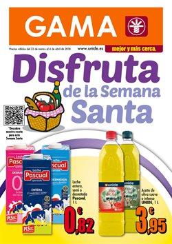 Ofertas de GAMA  en el folleto de Madrid