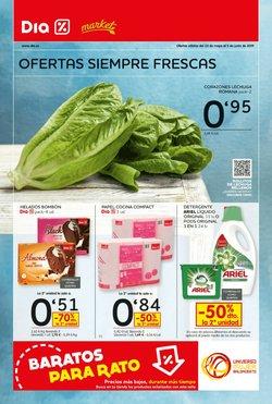 Ofertas de Dia Market  en el folleto de Carrizo