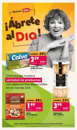 Catálogo Dia Market en Alzira ( Publicado ayer )