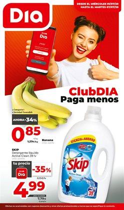 Catálogo Dia Market en Barcelona ( Caduca mañana )
