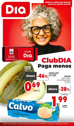 Catálogo Dia Market ( Caduca mañana )