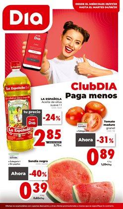 Catálogo Dia Market en Alicante ( Caduca mañana )