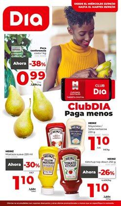 Catálogo Dia Market en Igorre ( 2 días publicado )