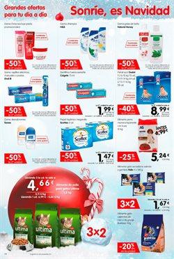 Ofertas de Gel de baño  en el folleto de Maxi Dia en El Ejido