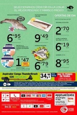Ofertas de Aspirador escoba  en el folleto de Maxi Dia en Bilbao