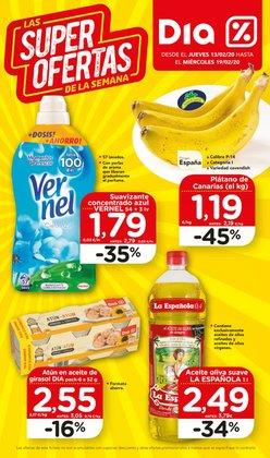 Catálogo Maxi Dia en Vitoria ( Caduca hoy )