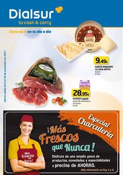 Ofertas de Dialsur Cash & Carry  en el folleto de Murcia