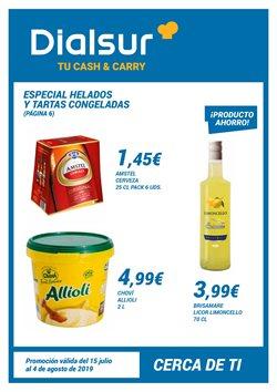 Ofertas de Dialsur Cash & Carry  en el folleto de El Palmar