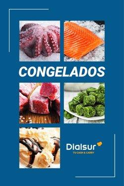 Ofertas de Profesionales en el catálogo de Dialsur Cash & Carry ( Publicado hoy)