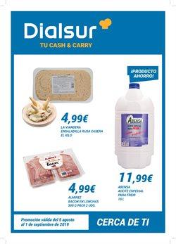 Ofertas de Dialsur Cash & Carry  en el folleto de Paterna