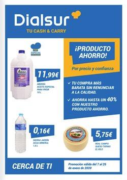 Ofertas de Dialsur Cash & Carry  en el folleto de Valencia