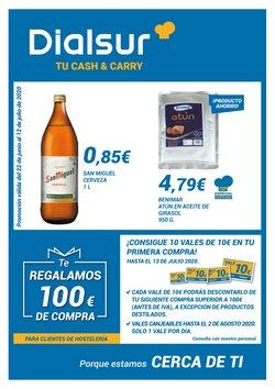 Catálogo Dialsur Cash & Carry en Alicante ( 6 días más )